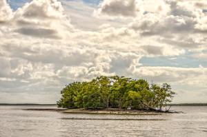 Ten Thousand Island